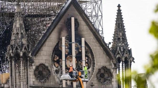 Abejas a salvo en Notre Dame | Al Mayadeen Español
