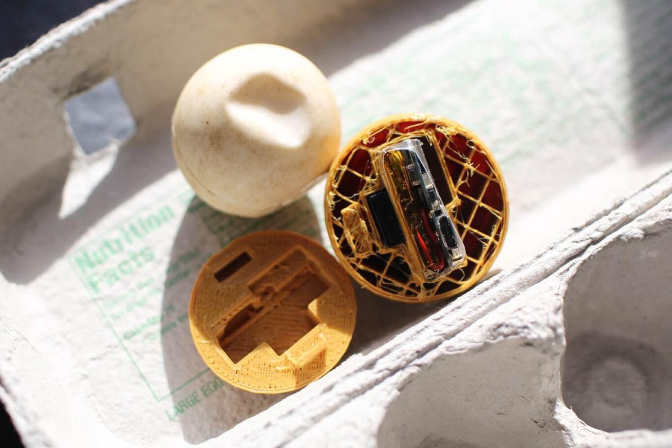 Científicos crean huevos falsos con GPS para combatir el tráfico ilegal de tortugas en Costa Rica