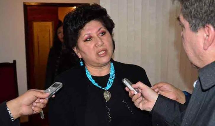 Condena diputada de Bolivia hostilidad de gobierno de facto contra veedores electorales