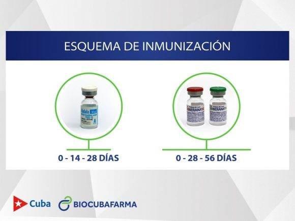 Esquema de Inmunización