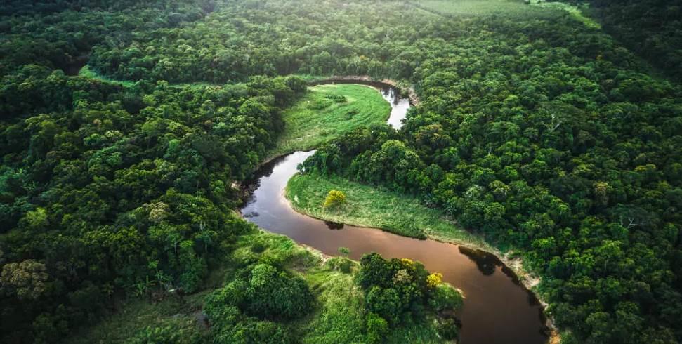 Preocupantes cambios en la Amazonía brasileña