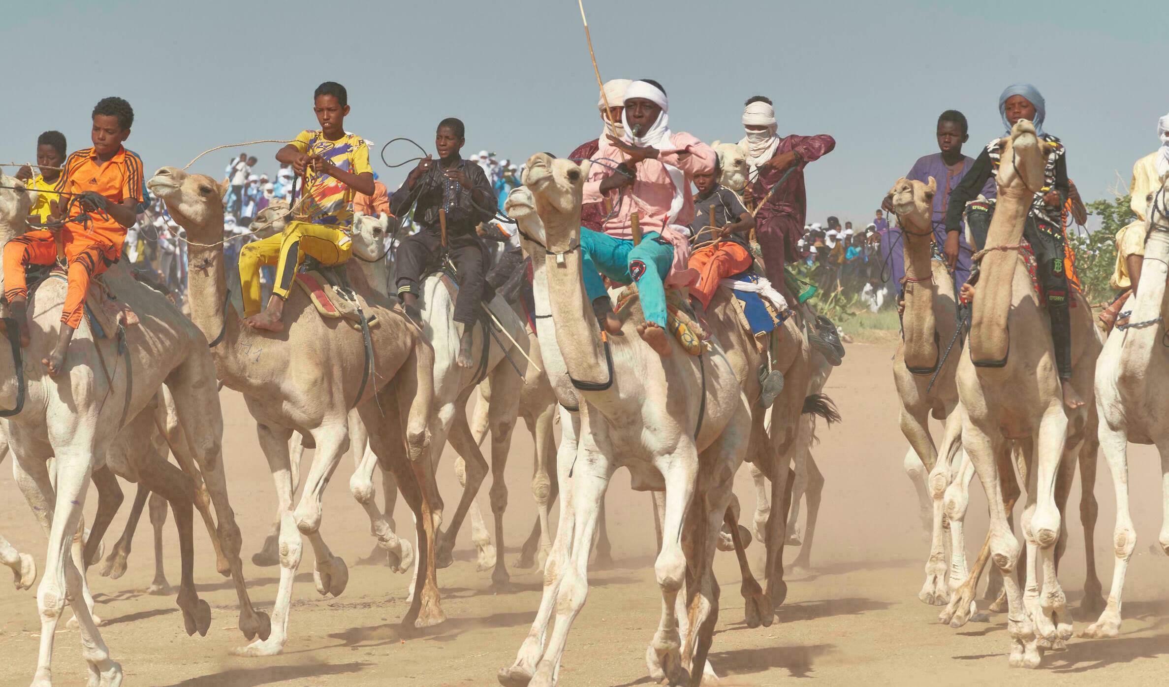 Moussa, velocidad y gloria en una de las principales carreras de camellos del Sahara